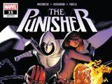 Punisher Vol 12 15