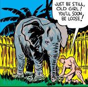 David Rand (Earth-616) from Marvel Mystery Comics Vol 1 3 0001.jpg