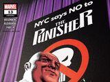 Punisher Vol 12 13