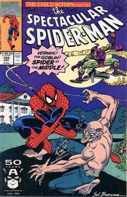 Spectacular Spider-Man Vol 1 182