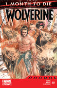 Wolverine Annual Vol 4 1