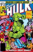 Incredible Hulk Vol 1 227