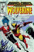 Marvel Comics Presents Vol 1 7