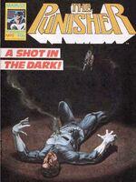 Punisher (UK) Vol 1 9