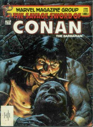 Savage Sword of Conan Vol 1 89.jpg