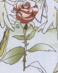 Ebon Rose from Mystic Arcana Black Knight Vol 1 1 0001.jpg