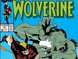 Wolverine Vol 2 14