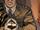 General Mwenye (Earth-616)
