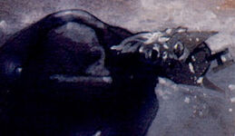 Clinton Barton (Earth-9591)