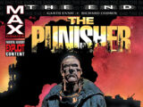 Punisher: The End Vol 1 1