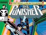Punisher Vol 2