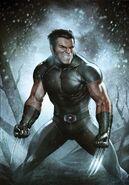 Wolverine Weapon X Vol 1 4 Variant Granov Textless