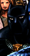 T'Challa (Earth-71016)