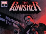 Punisher Vol 12 1