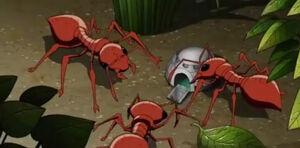 Avengers Micro Episodes Ant-Man & The Wasp Season 1 1 Image.jpg