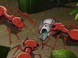 Avengers Micro Episodes: Ant-Man & The Wasp Season 1 1