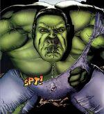 Bruce Banner (Earth-20017)