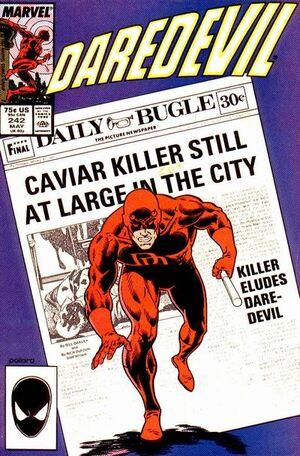 Daredevil Vol 1 242.jpg
