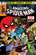 Amazing Spider-Man Vol 1 206