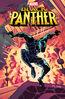 Black Panther (IDW) Vol 1 1 Charretier Variant.jpg