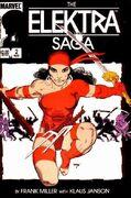 Elektra (Limited Series) Vol 1 2