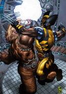 Wolverine Vol 3 53 Textless