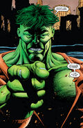 Bruce Banner (Earth-616) from Hulk Future Imperfect Vol 1 1 001