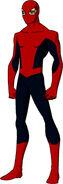 Westler Spider-Man
