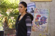 Elena Rodriguez Bouncing Back 01