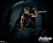 Hawkeye-the-avengers-wallpaper