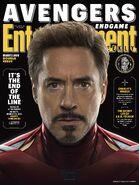 Endgame EW Cover Stark