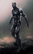 Jerx-marantz-black-panther-3