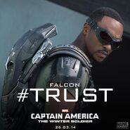 Falcon CATWS-Trust