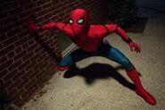 Spider-ally