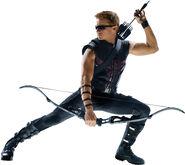TheAvengers Hawkeye1