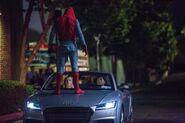 Spider-Thief