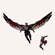 Falcon Antman