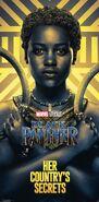 Gold Black Panther Poster 02