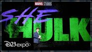 Fans React to New Marvel Studios Series at D23 Expo!