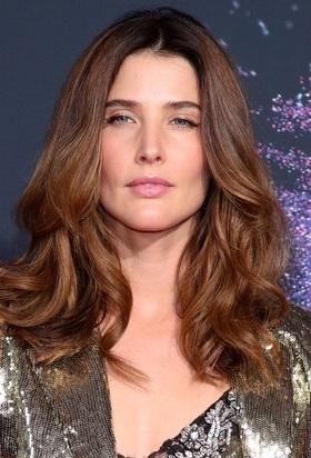 Cobie Smulders Marvel Movies Fandom
