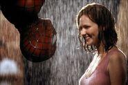 2002 spider man 018