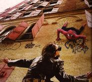 Spider-theif