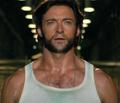 Wolverine D2