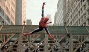 Spider-aerobics