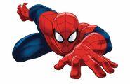 Ultimate Spider