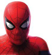Friendly Neighbourhood Spider-Man