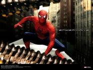 Spiderman2 (4)