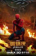 SMH Chinese Poster 10