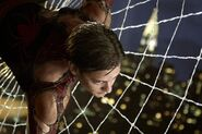 Spider-Parker-web