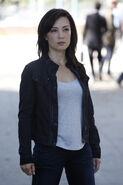 Agents of S.H.I.E.L.D. Shadow's 11
